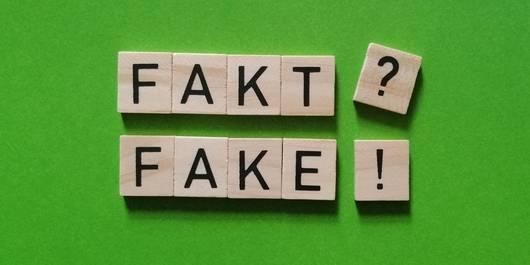 "Holzbuchstaben ""Fakt? Fake!"""