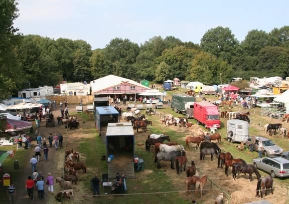 havelberg   pferdemarkt 02